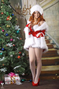 http://img104.imagevenue.com/loc167/th_531623120_silver_angels_Sandrinya_I_Christmas_1_101_123_167lo.jpg