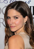 Sophia Bush @ Cocktail Reception honoring Richard O'Barry in West Hollywood | March 3 | 6 pics