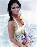 Cheryl Tiegs Foto 1 (Шерил Тиегс Фото 1)