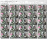 http://img104.imagevenue.com/loc485/th_30700_Japaneseoutdoormasturbating.avi_thumbs_2012.06.14_01.53.18_123_485lo.jpg